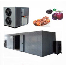 Food dehydrator commercial use apricot fruit heat pump drying machine