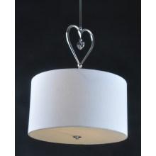 Moda ronda sombra decorativa luces colgantes (8115-2)