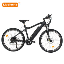 CE New 250W Motor Pedal Assist Bike e Chinese Electric Mountain Bike Electrical Bicycle