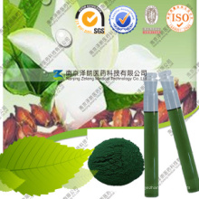 Natural Pigment Manufacturers Green Pigment of Plants