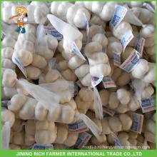 Оптовое высокое качество китайский свежий белый чеснок 5.5cm мешок сетки в коробке