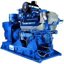 600 кВт Германия Mwm Генератор биогаза сточных вод