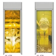 Fjzy-Elevator (FJ8000-1) Elevador Pasajero Fjzy-246