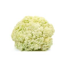 Qualidade Deliciosa Couve-flor Congelada