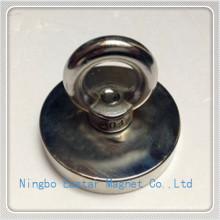Forma especial personalizada neodimio imán lechón