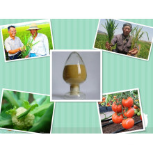 Amino Acid Fulvic Acid Compound Fertilizer