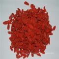 Fábrica de frutas secas de china semillas orgánicas de baya de goji secas