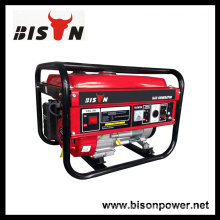 Bison China Zhejiang 3kw OEM Single Phase Gasoline Powered Generator Set