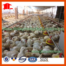 Pan Feeding System for Poultry Farming