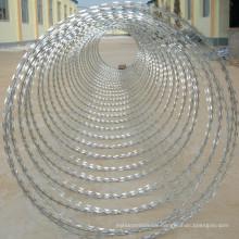 Canton packing galvanized security concertina razor barbed wire,razor wire fencing,high zinc coated galvanized razor wire