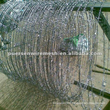 SS Barbed Wire manufacturer in Anping