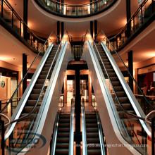 Edificio comercial comercial económico Centro comercial residencial escalera de pasajeros