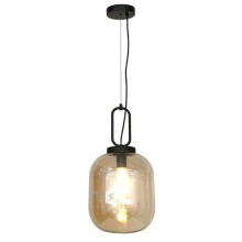 Modern Egg Light Bulb Shaped Glass Pendant Lamp