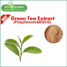 Düşük kafeinli çay polifenolleri