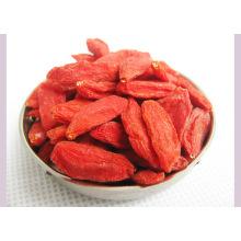 Medlar Goji Berry Snack Food