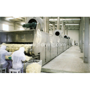 Mesh belt dryer machine