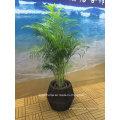 Conjunto de jardim ao ar livre / Rattan Flower Pot