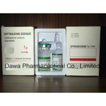 Medicina Geral Ceftriaxone Sodium Injection