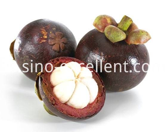organic mangosteen juice powder