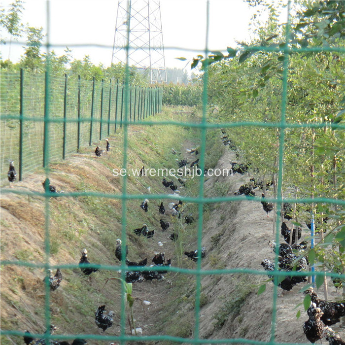Svetsat Wire Mesh Europe Security Fence
