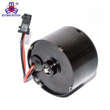 Shenzhen 12V 24V dc brushless motor BLDC