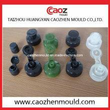 Rabat d'injection en plastique / moule à coquille