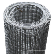 Welded Wire Mesh 1