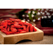 Goji Berry Konvensional 380 #