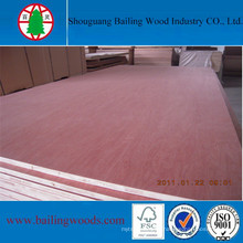 High Quality Falcata Core Bintangor Veneer Blockboard