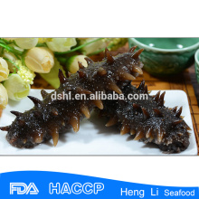 Low-Fat Frozen sea cucumber wholesales