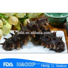 Rich Nutritious alimentos pepino do mar-japonês cucumaria