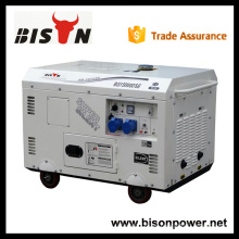 BISON China Zhejiang diesel monofásico 15 kva generador silencioso