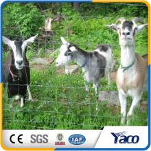 1.5m highCorrosions-beständiger Feldzaun kuh / Rotwild / Ziege / sgalvanized Drahtmaterial und Bauernhof-Fechten für coltain Ziegen, Pferd, Rotwild