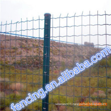 Factory Sale Low carbon steel Hot Dipped Galvanized Euro Fence/Pvc Coated Euro Fence