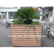 anti-slip wpc tree gate