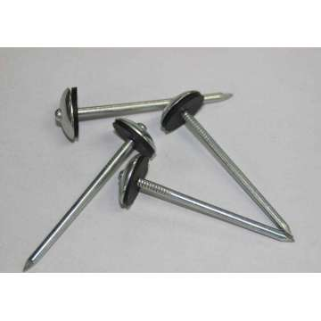 Best Plain Shank Umbrella Roofing Nails