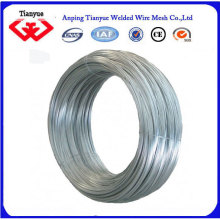 Electro Galvanized/ Hot Dipped Galvanized Iron Wire Flat Wire