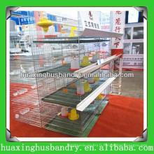 Cage de poulet pour bébé avec système automatique d'alimentation et d'arrosage