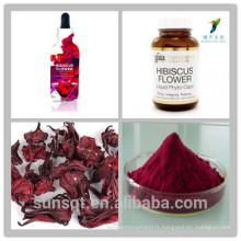 Extrait sec de fleurs d'hibiscus / Hibiscus sabdariffa poudre d'extrait / poudre de jus d'hibiscus