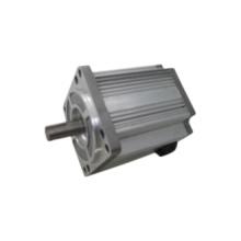 110mm 310V 1000W Brushless Motor