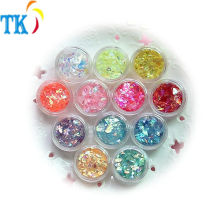 wholesale 12color 3 grams of shell glitter in the bottle