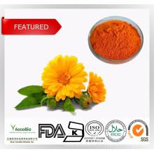 Venta superior de alta calidad Luteína (extracto de caléndula), 5% -95%