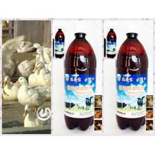 Algae Feed Additive Bio Preparate Agent