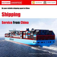Servicio de envío y envío de logística profesional de China (servicio de envío)