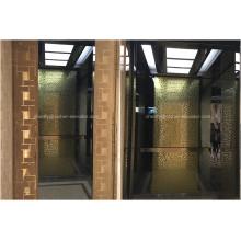 Ascenseur de passager de type d'entraînement à CA Vvvf pour la maison