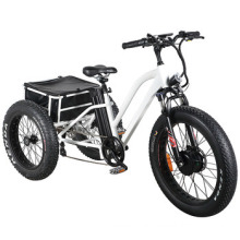 Fat Tyre Electric Tricycle
