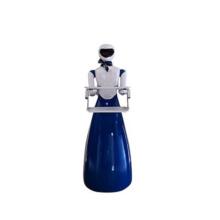 Robô de Robô Magnético para Restaurante Robótico