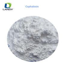 Venta CALIENTE China barato precio materias primas farmacéuticas Cephalexin