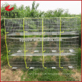 24 Doors Stainless Steel Rabbit Cage