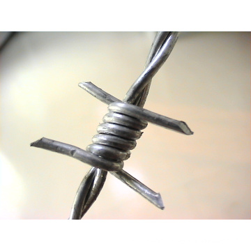 12X12, 14X14 Barbed Wire